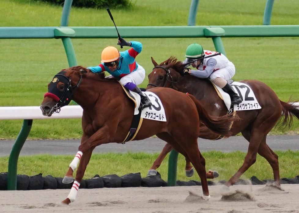 【中山3R】ドゥラメンテ産駒 イルチルコが初勝利