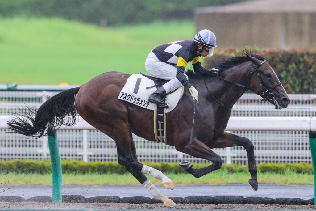 【新馬/中京4R】アスクドゥラメンテが完勝 福永騎手は年間100勝