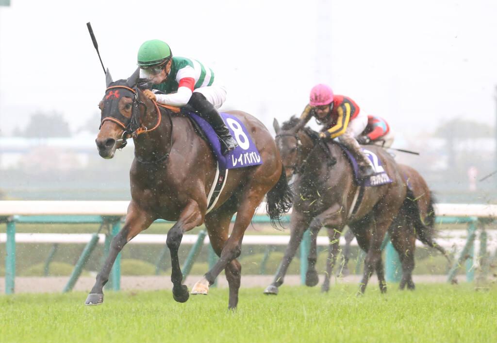 【神戸新聞杯登録馬】ダービー馬シャフリヤールなど11頭
