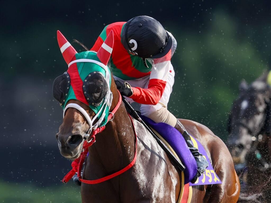 【サマーチャンピオン】鮫島克「自分の競馬をするだけ」ラプタスが圧勝