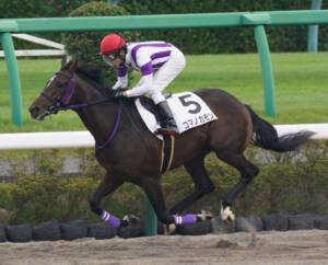 【新馬/中山3R】ルーラーシップ産駒 コマノカモンがデビューV