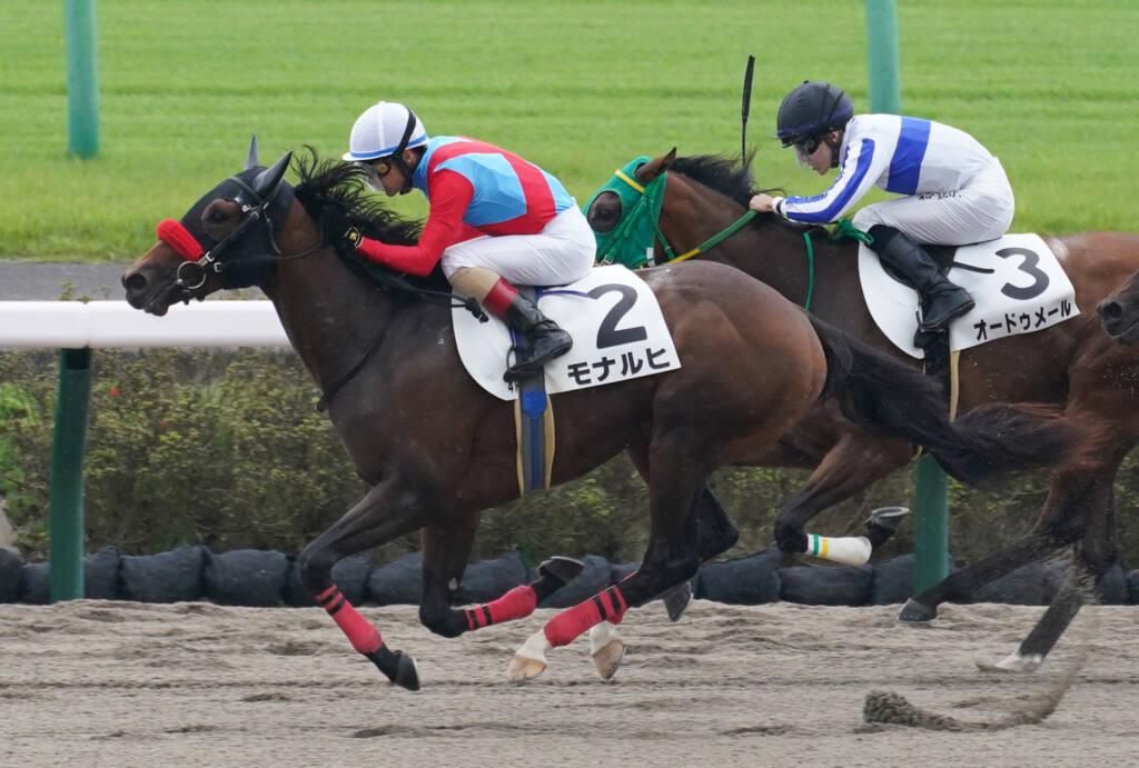 【新馬/中山4R】ヘニーハウンド産駒 モナルヒがデビューV