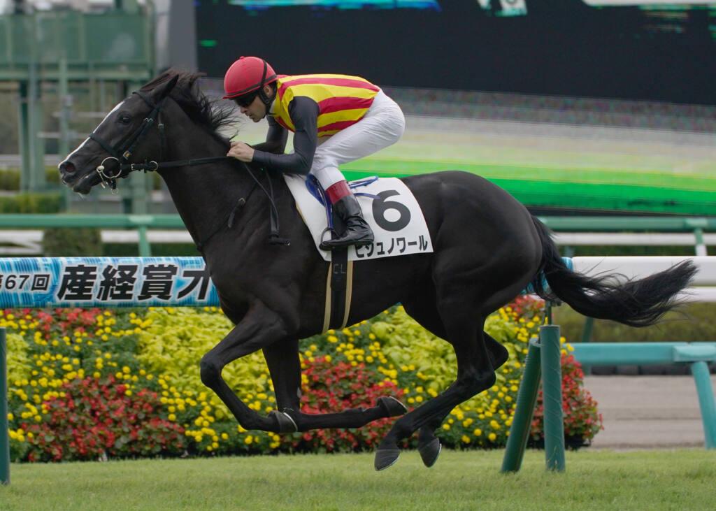 【新馬/中山3R】ホッコータルマエ産駒 フルオールがデビューV