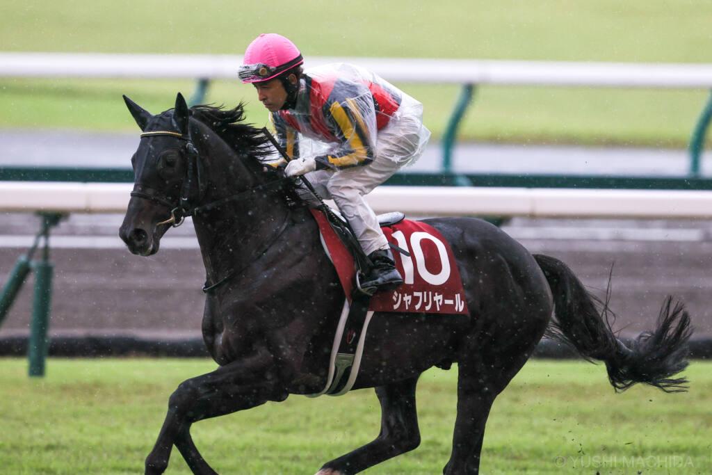 【神戸新聞杯】吉田隼「馬場を意識していた」ステラヴェローチェがダービー馬を撃破