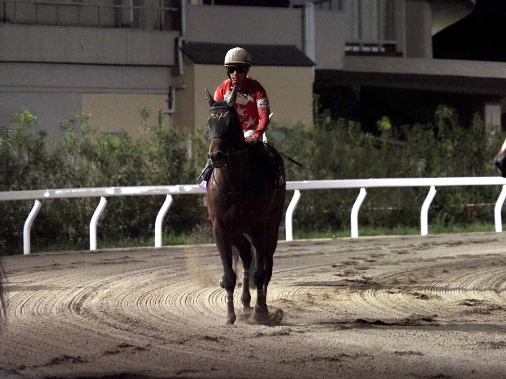 【東京盃】ルメール「次はチャンス」レース後ジョッキーコメント