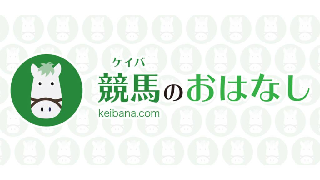 【新馬/阪神4R】ペルアアが人気に応える